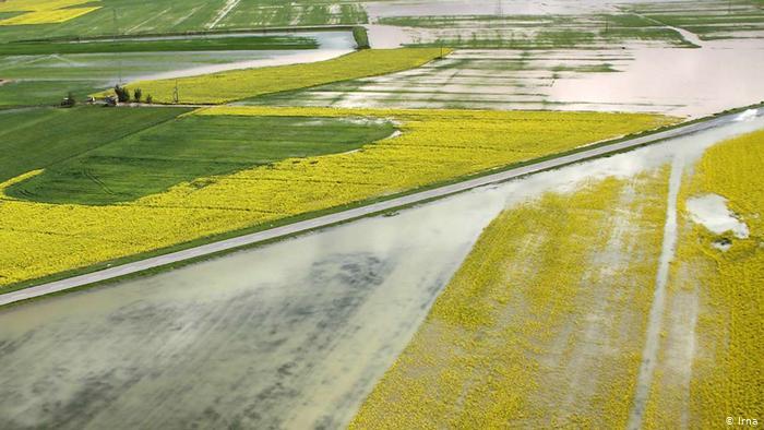 Iran_Record_Flood_Pictorial-4  سطح ۵۳ هزار و ۳۰۰ هکتار به مقدار ۴۰ درصد خسارت وارد شد